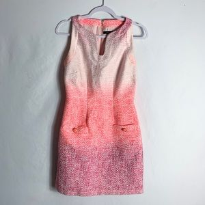 Cynthia Steffe Pink Blend V Neck Dress